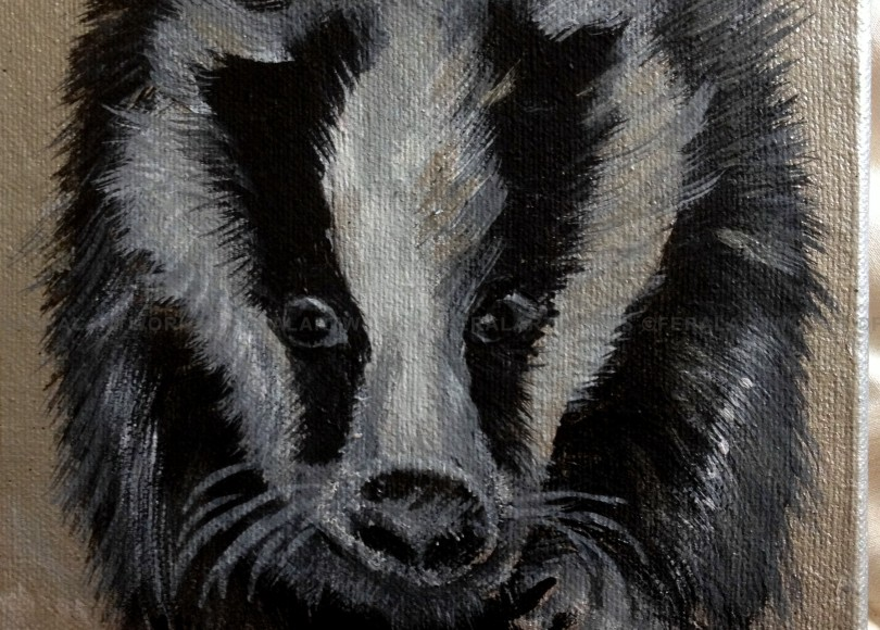 Badger - Kathy Livick
