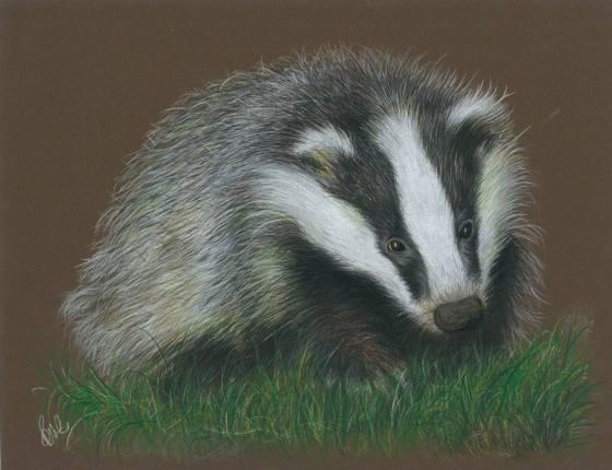 Boris the Badger - Paul Caton