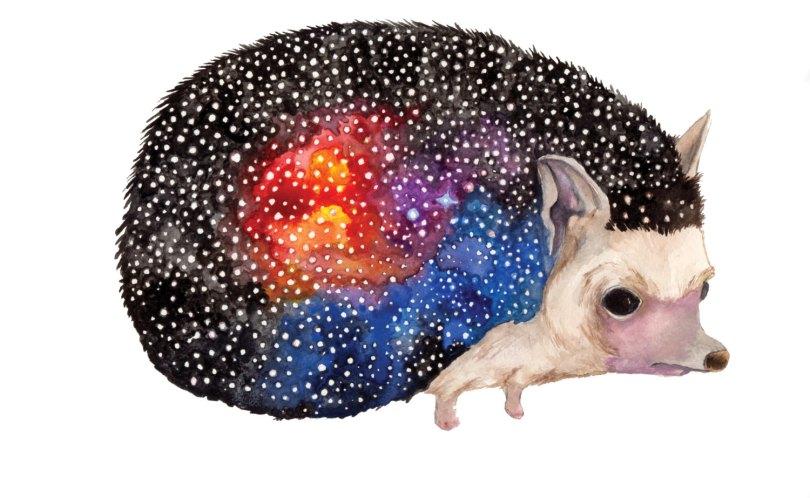 Celestial Ghost Hedgehog - Aaron Wright