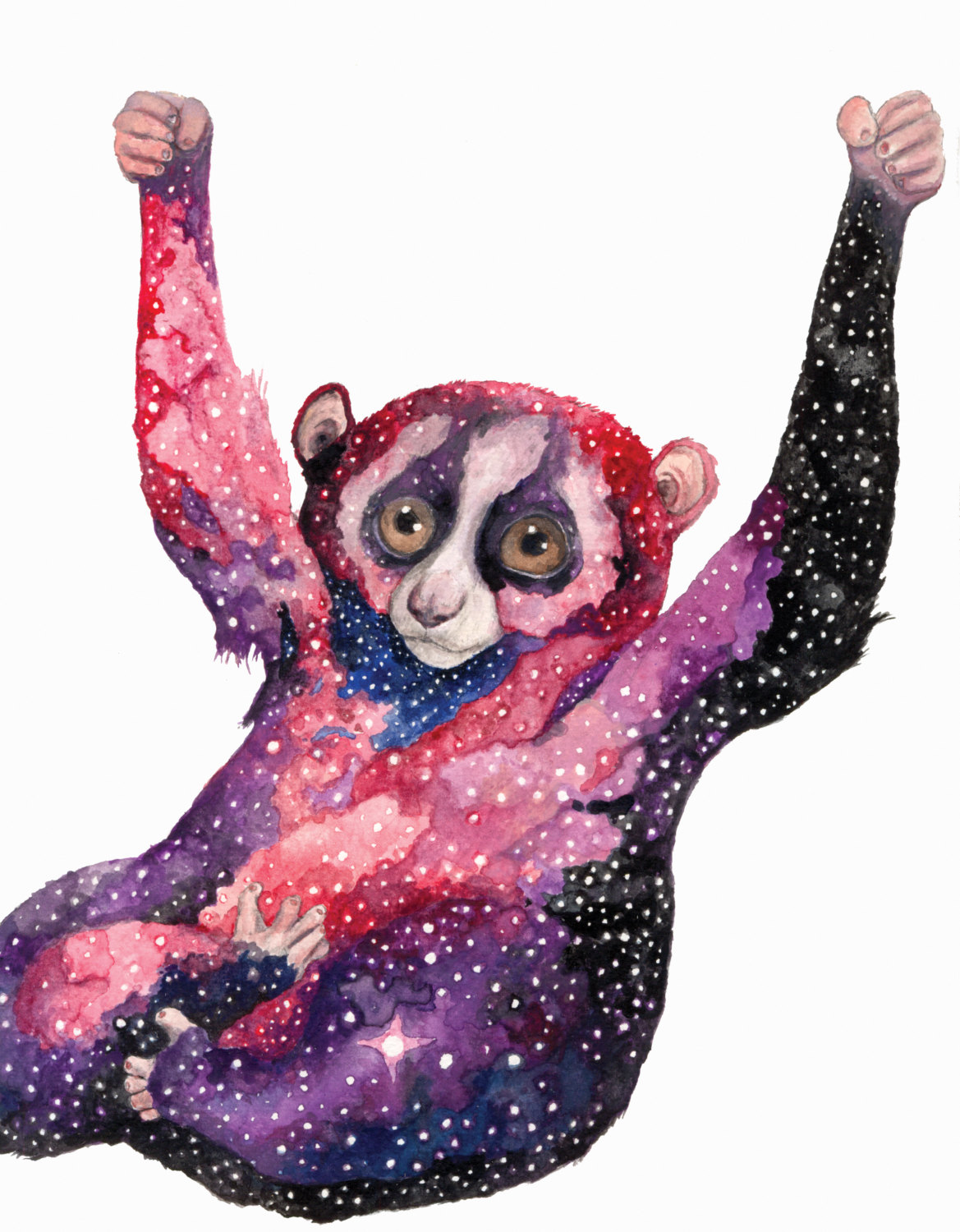 Celestial Ghost Slow Loris - Aaron Wright
