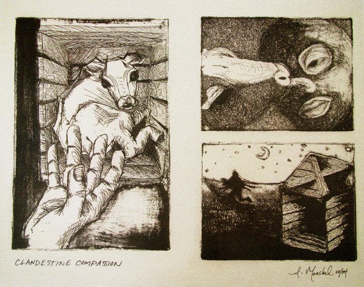 Clandestine Compassion - Amanda Moeckel