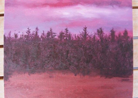 Forest Sunset - Pinja Jokiranta