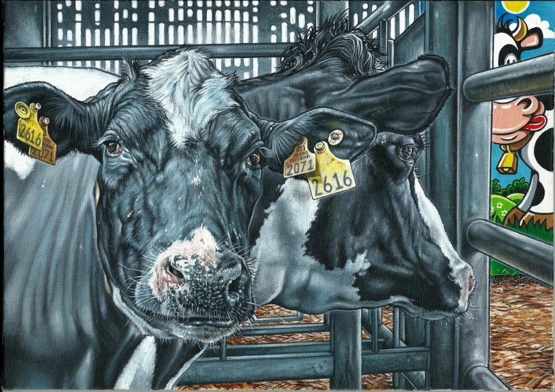 Happy Cows - Philip McCulloch-Downs