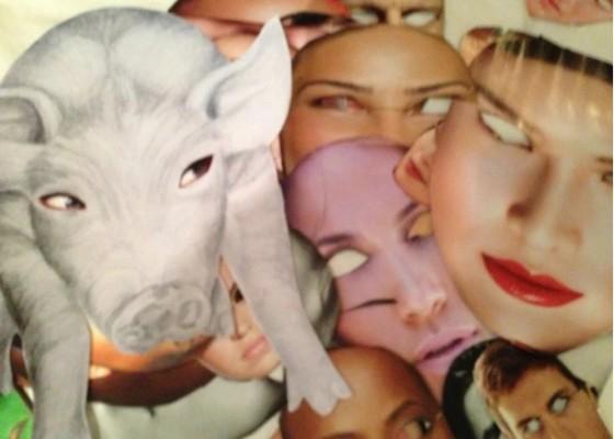Pig Blindness - Kathryn Eddy