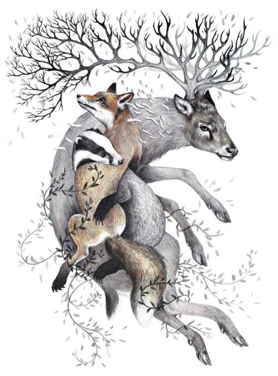 Protect Wildlife - Kate Louise Powell