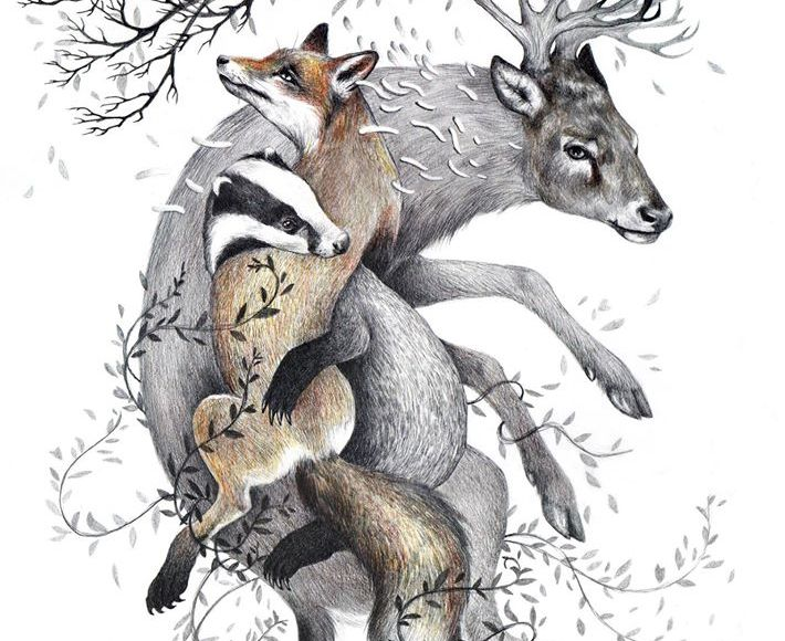 Protect Wildlife - Kate Louise Powell