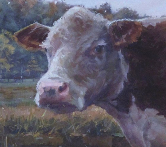 Sherman the Cow - Marcus Pierno